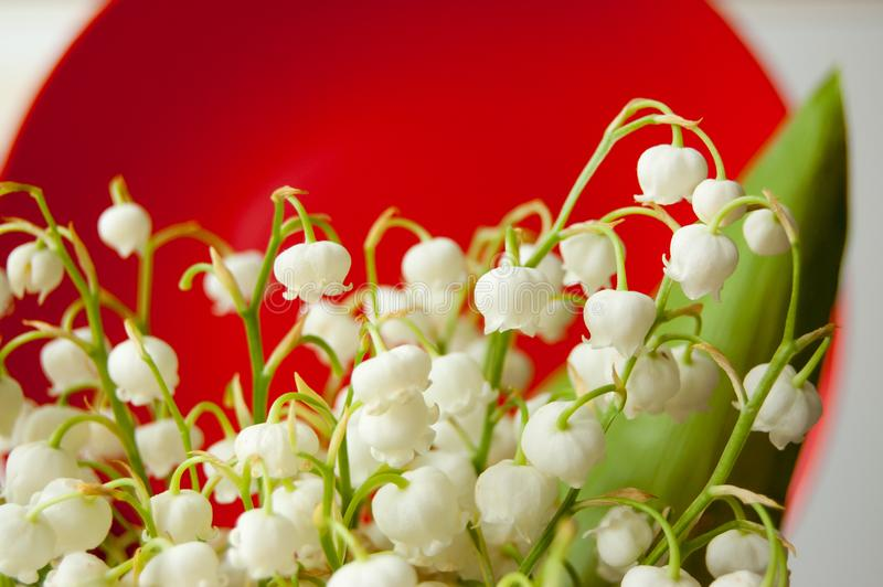 Букет белого ландыша на красной предпосылке стоковое изображение