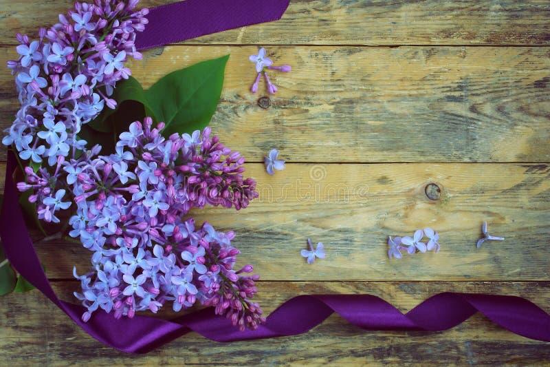 Букет ветвей сирени с фиолетовой лентой стоковые фотографии rf