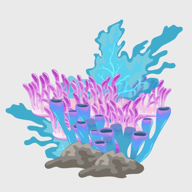 Букет голубого и розового коралла, подводного комплекта бесплатная иллюстрация