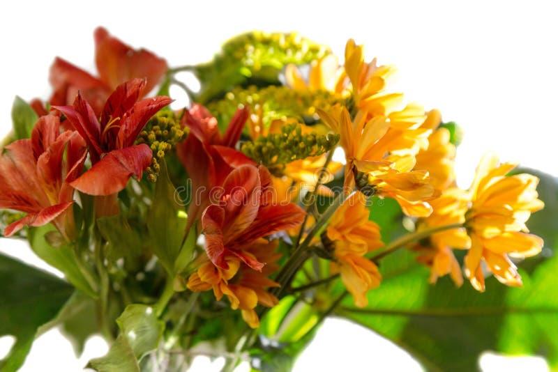Букет желтых, красных и оранжевых цветков стоковое изображение rf