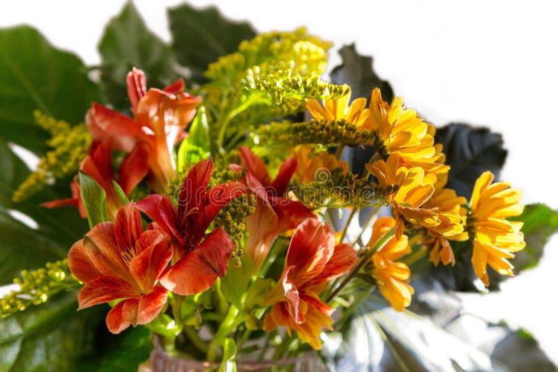 Букет желтых, красных и оранжевых цветков стоковые изображения