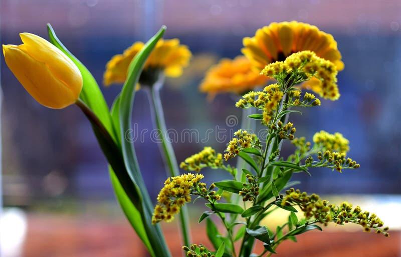 Download Букет желтых цветков стоковое фото. изображение насчитывающей состав - 87742070
