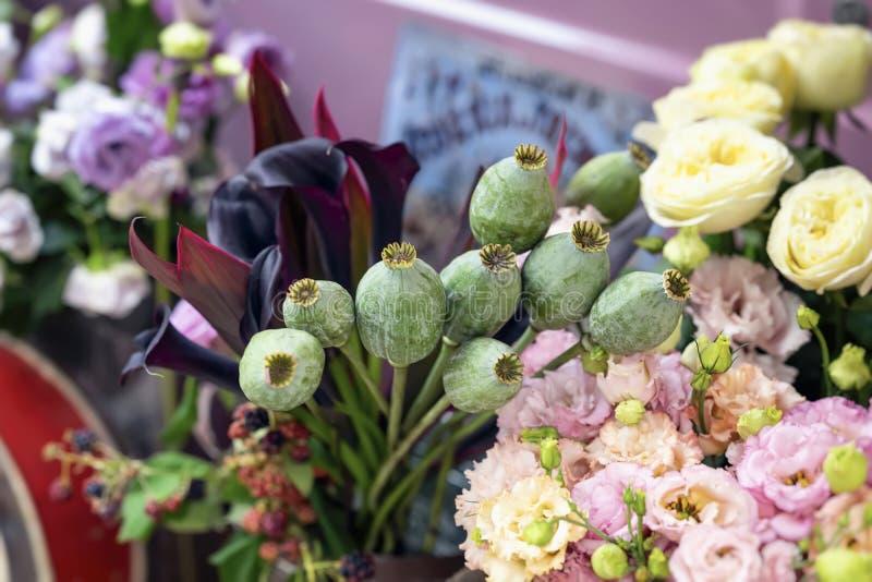 Букет зеленых голов опиумного мака, капсул, бутона семени и тропических листьев на предпосылке различных цветков в a стоковое фото