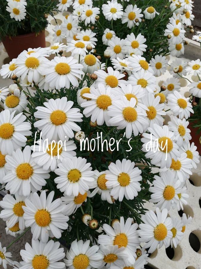 Букет красивых цветков на День матери стоковое изображение rf