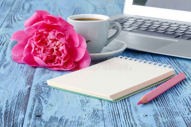 Букет красивых цветков пиона, компьтер-книжка стоковая фотография