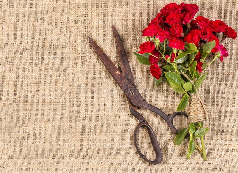 Букет красных роз и старые ржавые Scissor стоковая фотография rf