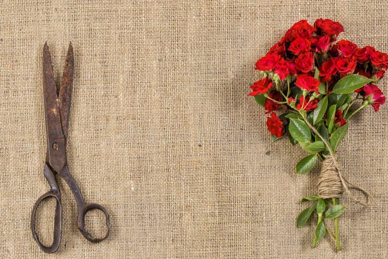 Букет красных роз и старых ржавых ножниц дальше на деревенской предпосылке джута стоковые фото