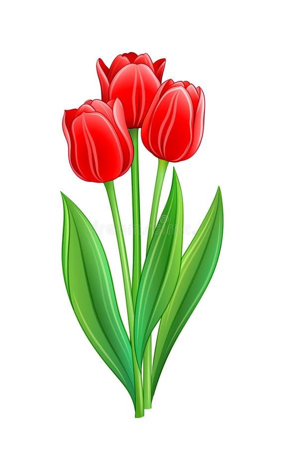 Букет красных тюльпанов бесплатная иллюстрация