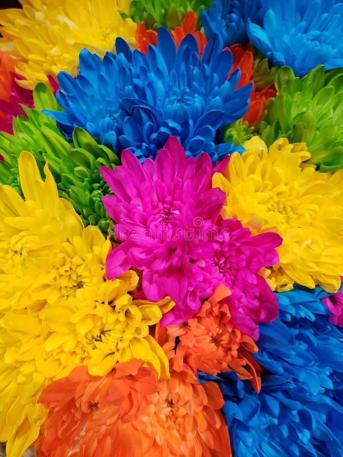 Букет множественных покрашенных цветков стоковое фото rf