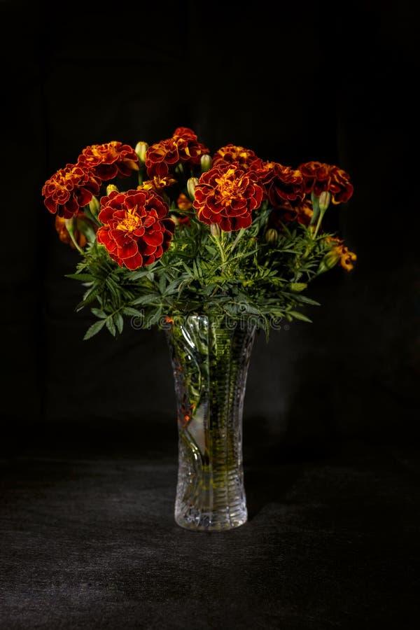 Букет ноготков цветков сада в стеклянной вазе стоковое изображение rf