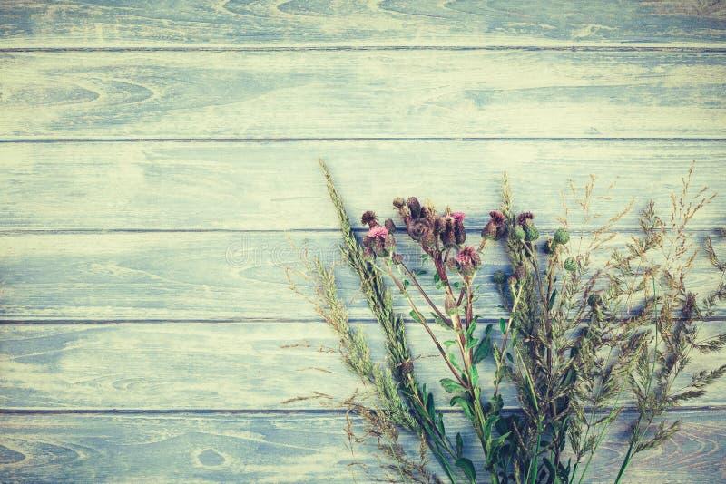 Букет осени сухих цветков и травы стоковые фотографии rf