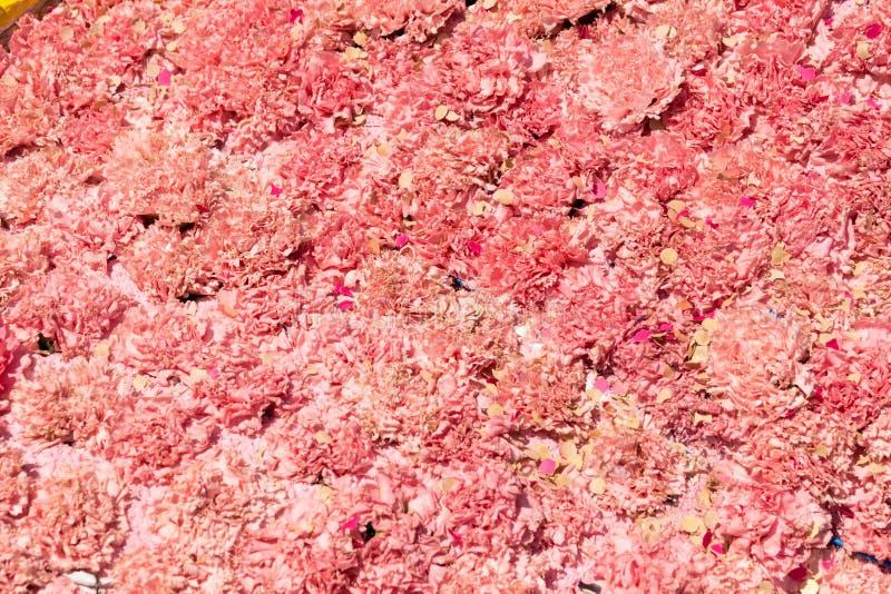 Букет пинка цветет гвоздика стоковая фотография