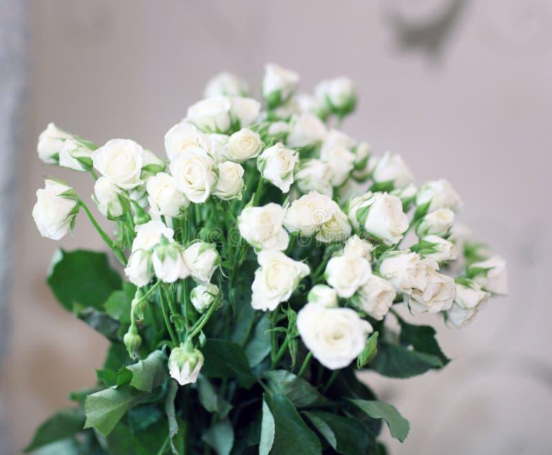 Букет предпосылки расположения годовщины белых роз стоковые фотографии rf