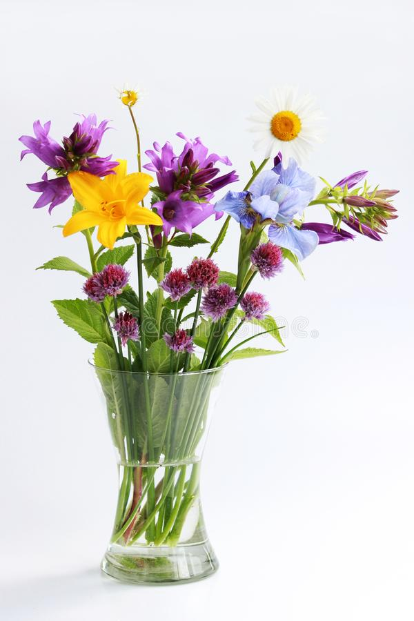 букет различных одичалых цветков поля и сада: стоцвет, колокол, лилия, chives, радужка стоковые изображения