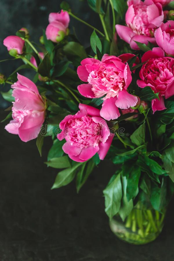букет розов-пурпурных пионов в вазе на темной предпосылке стоковые фотографии rf