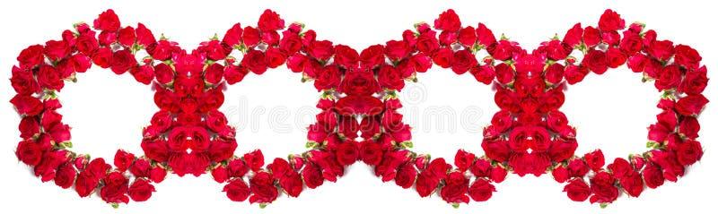 Букет роз аранжированных, что сформировать кольца или элемент дизайна для флористических тем стоковые изображения rf
