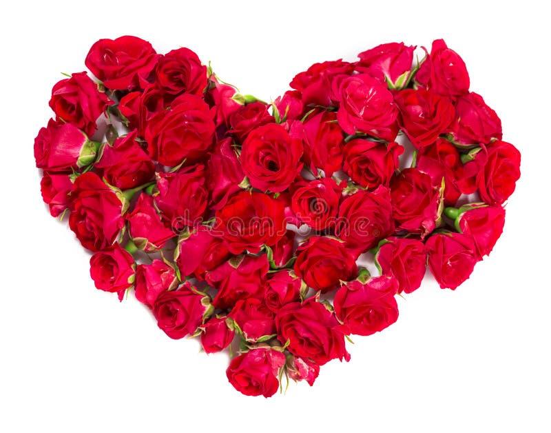 Букет роз аранжированных, что сформировать элемент сердца или дизайна для флористических тем стоковое изображение rf