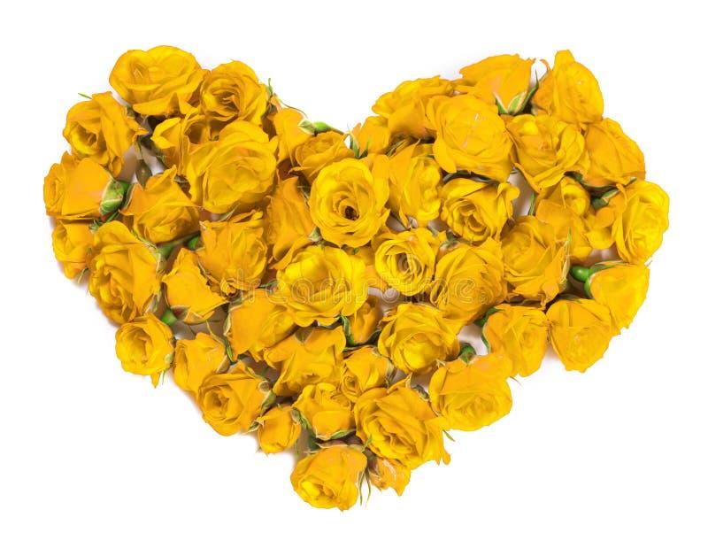 Букет роз - конструируйте элемент для флористических тем стоковые изображения
