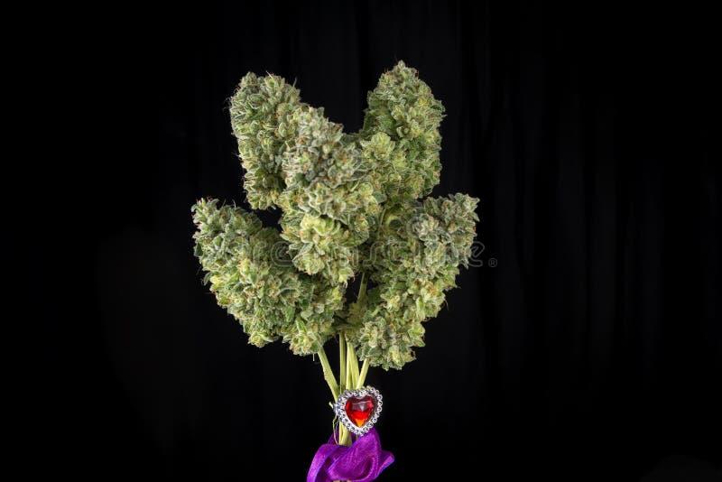 Конопля букет фото под какой лампу выращивать марихуану
