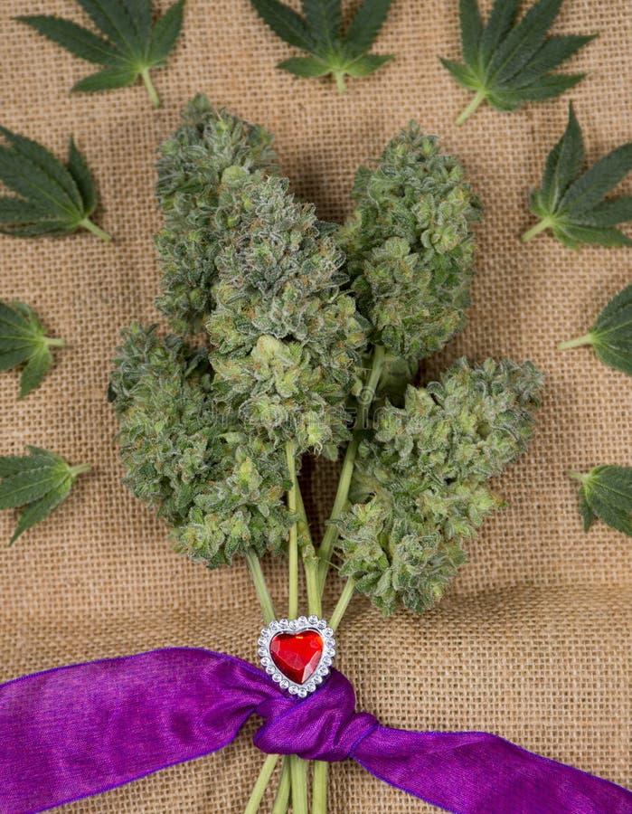 Букет из конопли как отличить марихуану по полу