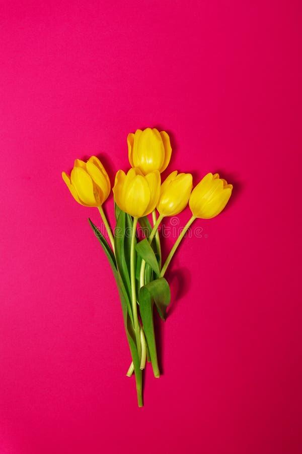 Букет свежих красивых желтых тюльпанов на розовом красочном Backgr стоковые фото