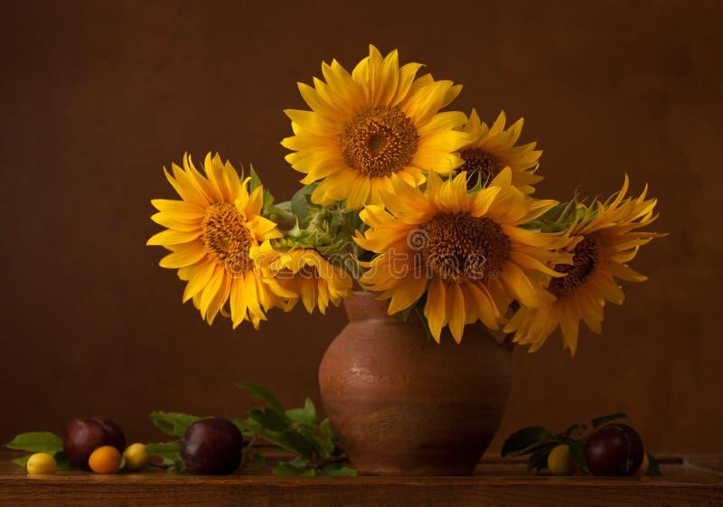 Букет солнцецветов стоковая фотография rf