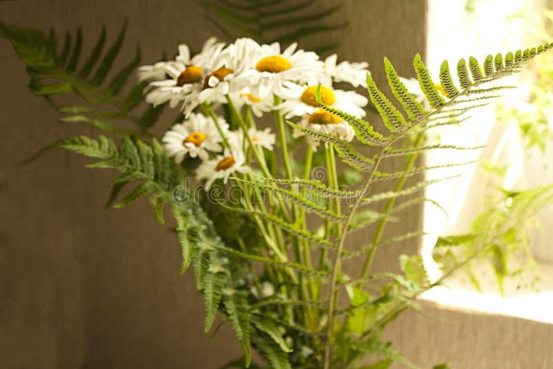 Букет стоцветов стоковое фото