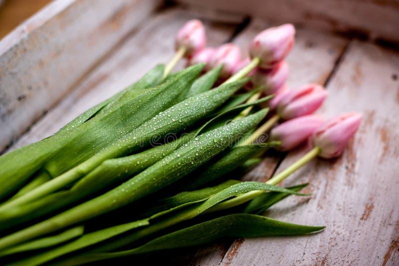 Букет тюльпана стоковые фотографии rf