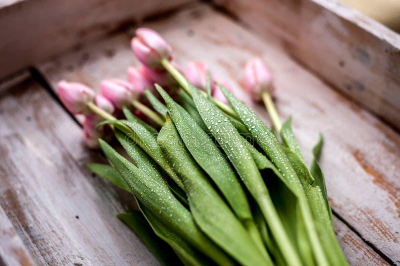 Букет тюльпана стоковые изображения