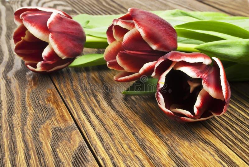 Букет тюльпанов на старых деревянных досках стоковые фотографии rf