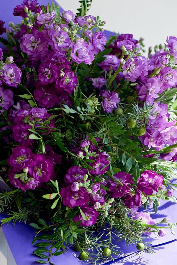Букет фиолетового Mattioli, упакованный в фиолетовой бумаге На белой предпосылке флористическо стоковые изображения rf