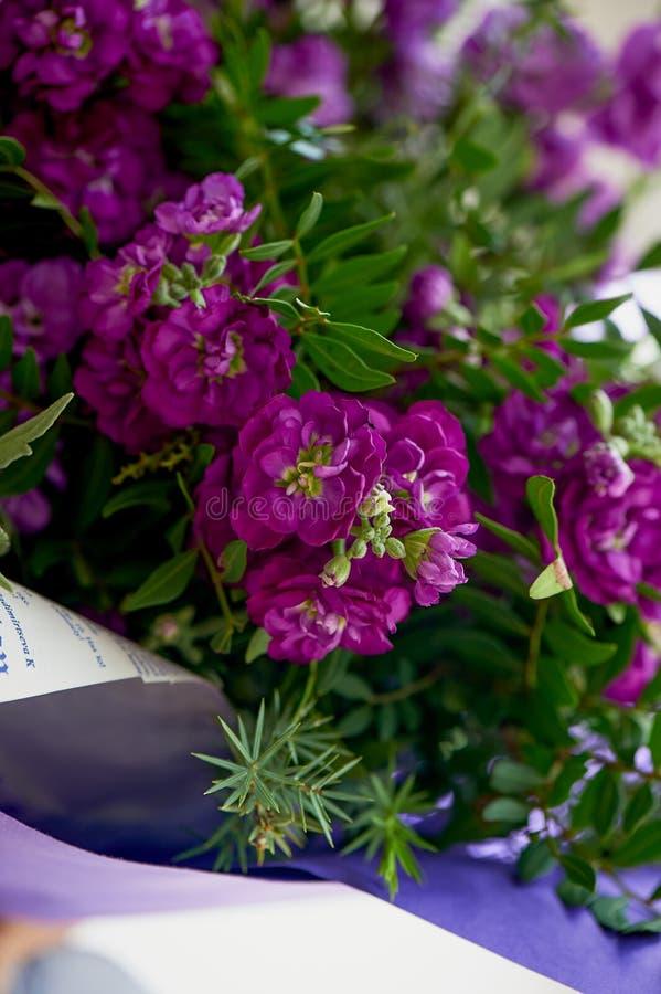 Букет фиолетового Mattioli, упакованный в фиолетовой бумаге На белой предпосылке флористическо стоковое изображение rf