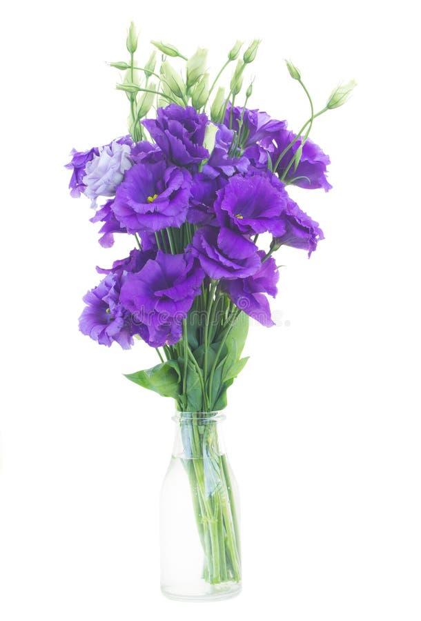 Букет фиолетовых цветков eustoma стоковые изображения rf
