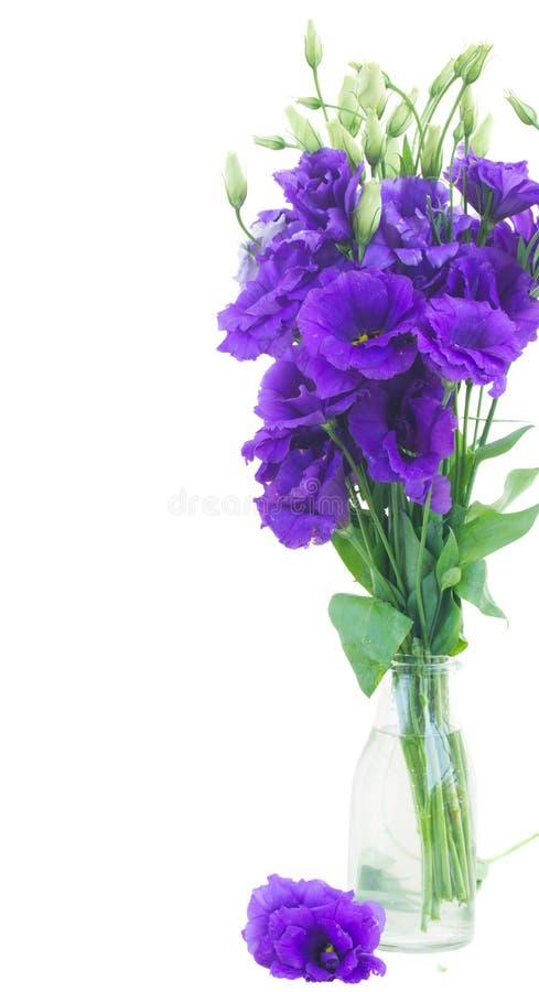 Букет фиолетовых цветков eustoma стоковое фото rf