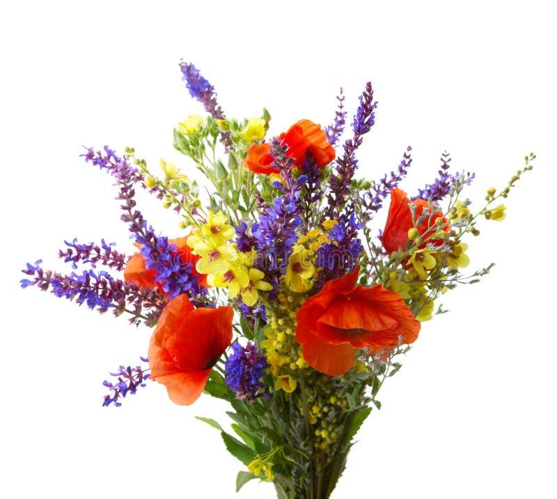 букет цветастый стоковые фотографии rf