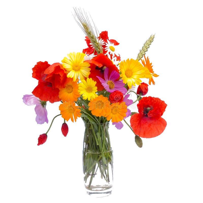 Букет цветка лета, белая предпосылка стоковая фотография rf