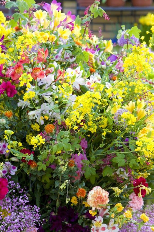 букет цветка, сады Keukenhof, Lisse, Нидерланд стоковое изображение rf