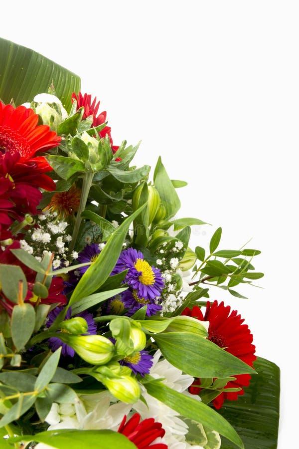 Букет цветка с космосом для текста стоковое фото rf