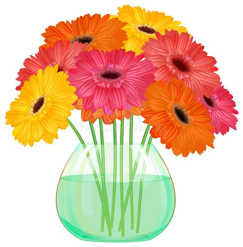 Букет цветка gerbera маргаритки в стеклянной вазе иллюстрация вектора
