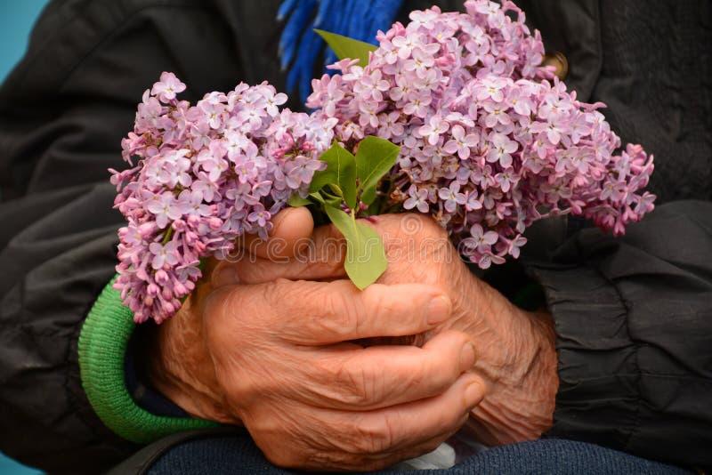 Букет цветков для мамы стоковое фото
