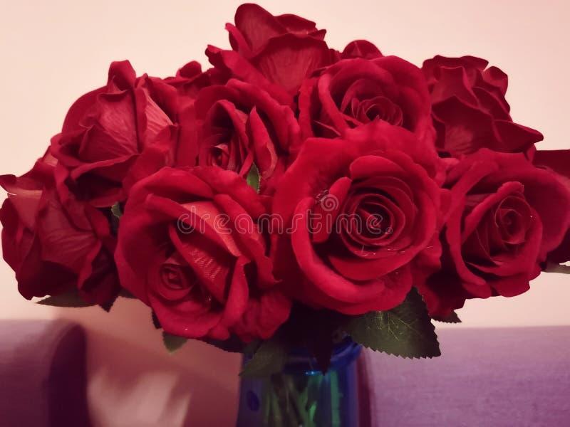 Букет ярких красных роз стоковое фото rf