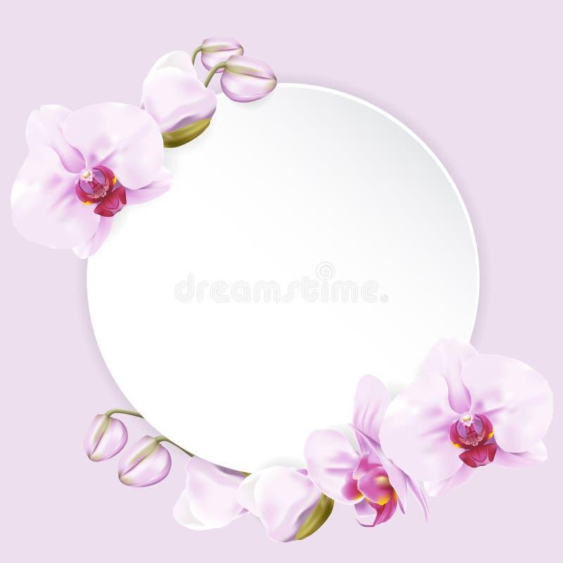 Бумага круга с орхидеями иллюстрация вектора