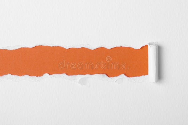 Бумага сорванная белизной стоковые изображения rf