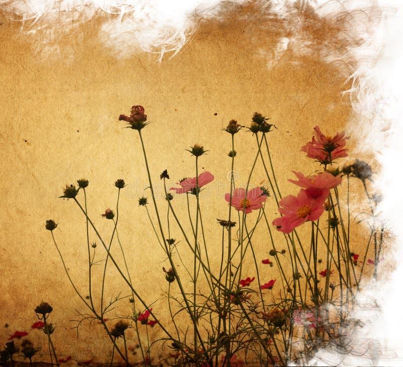 бумага цветка стоковое фото rf