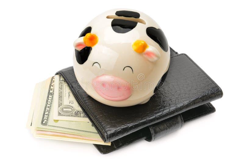 Бумажник с долларами и изолированная копилка на белизне стоковая фотография