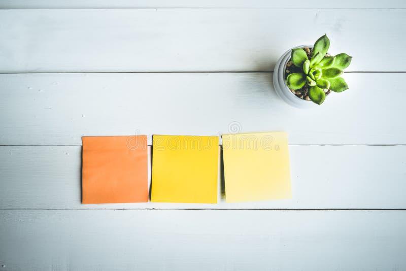 Бумажное примечание на белой деревянной таблице с кактусом бака/космосом экземпляра стоковые фотографии rf