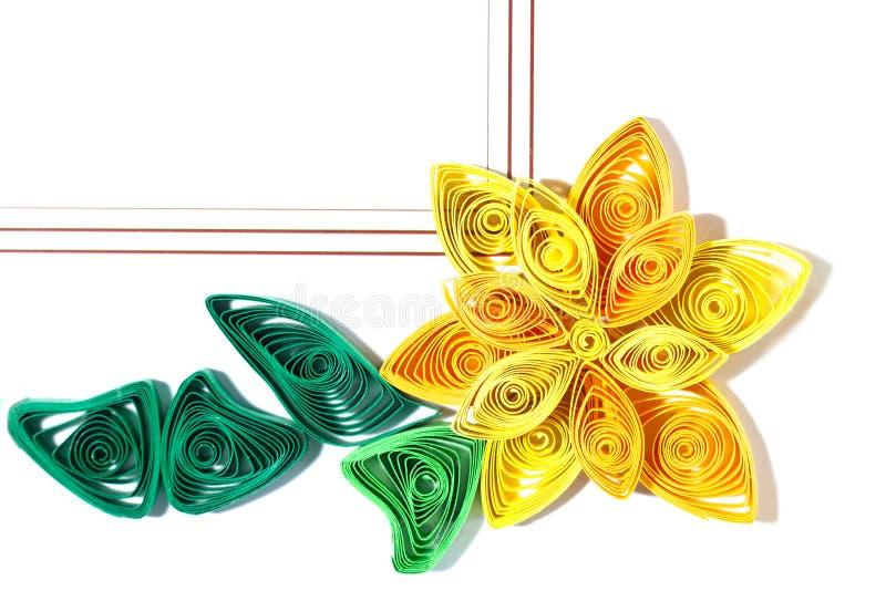 Бумажный цветок Quill стоковые изображения rf