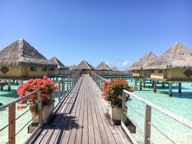 Бунгала в Bora Bora стоковое изображение rf
