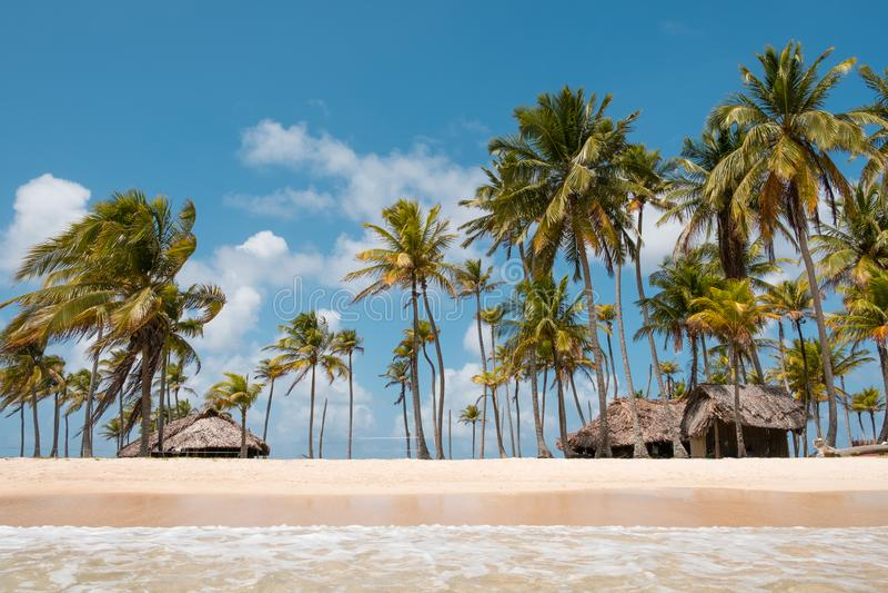 Бунгало пляжа на острове с пальмами - тропическом острове стоковые изображения rf
