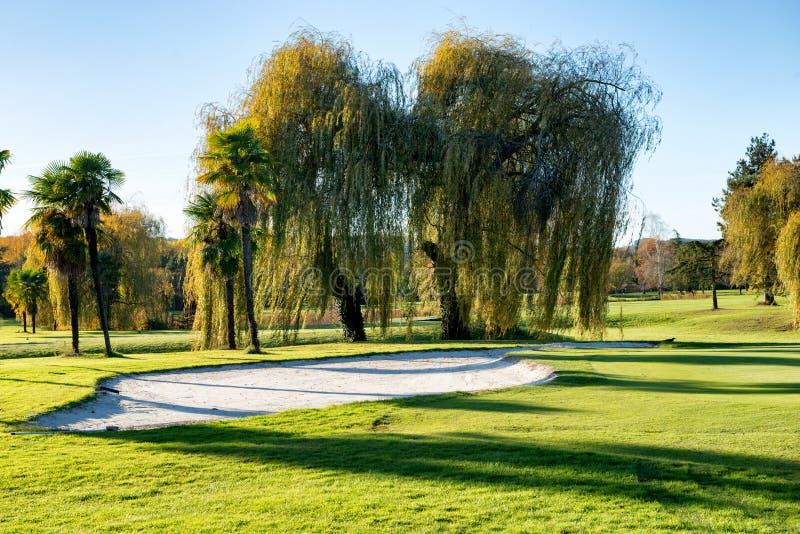 Бункер на поле для гольфа с деревьями стоковая фотография rf